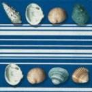 Bordure de coquillages