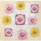 Marguerites (rose & jaune)