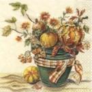 Courges d'automne