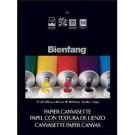 Bienfang 710 Papier Canvas 9X12 (10)