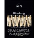 Bienfang 207 Calligraphie 9X12 (50) Doré