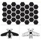 DISC. Pochoir - Ensemble abeilles