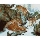 PBN - Dynastie de Tigres