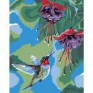 PBN - Oiseau-mouche