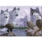 PBN SR LG - Loups & Aigles