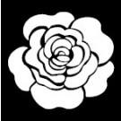 Pochoir - Rose unique