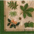 Feuilles d'automne (Vert)